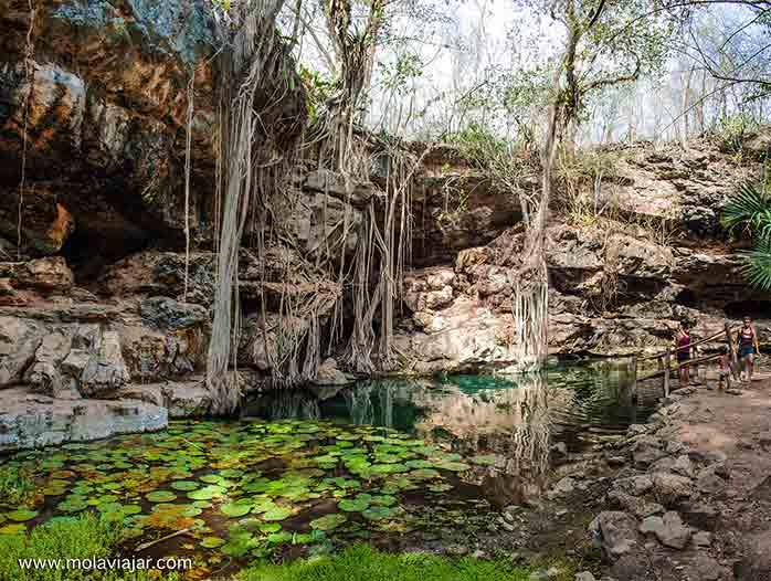 cenotes de mexico molaviajar.com