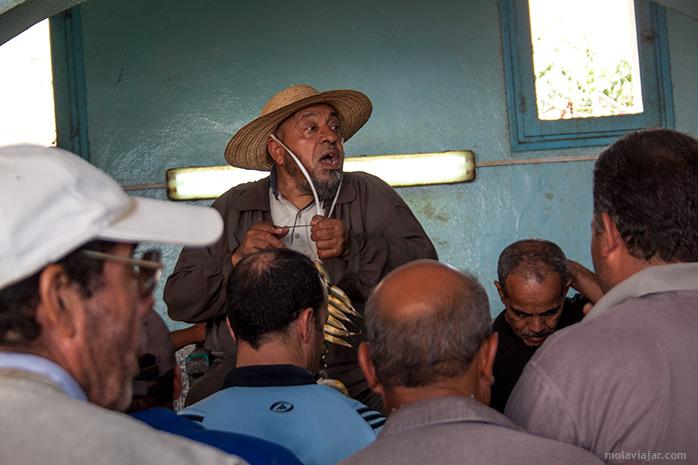 subasta mercado tunez