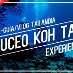 Bucear en Koh Tao. Experiencia