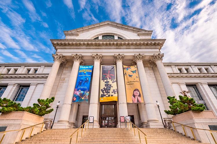 Museo-Americano-de-Historia-Natural