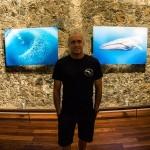 Fotografiando TIBURONES con Francis Pérez