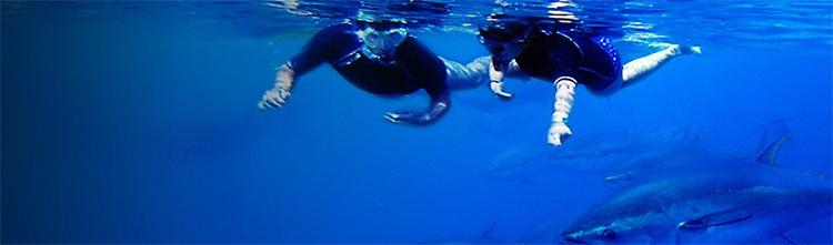 Snorkel-la-cala