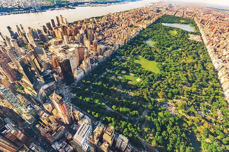 3 maneras de recorrer Central Park Nueva York