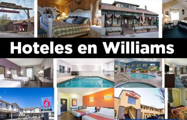 Hoteles en Williams