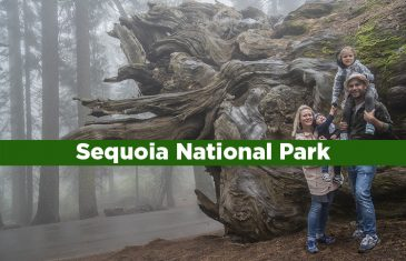guia Sequoia National Park